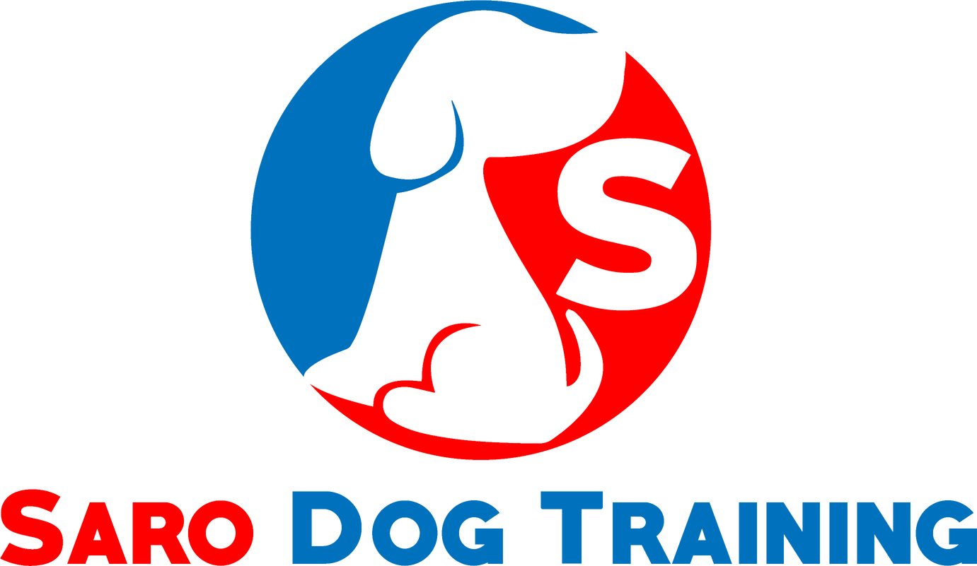 Saro Dog Training – Simple & Healthy Dog Training