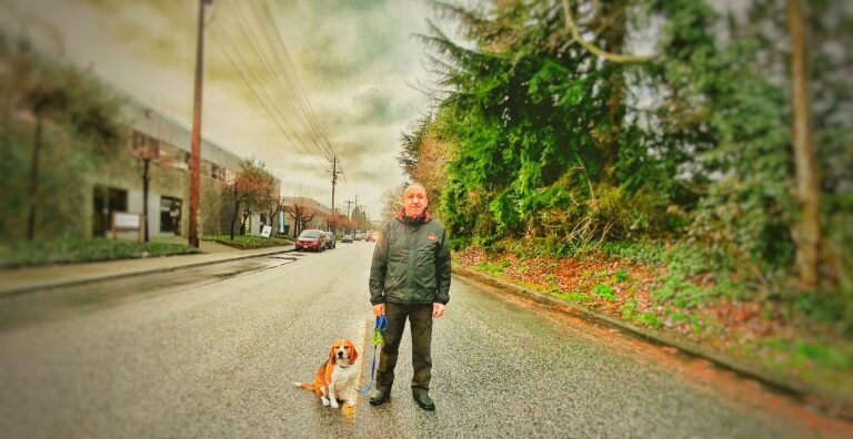Private dog training in North Vancouver