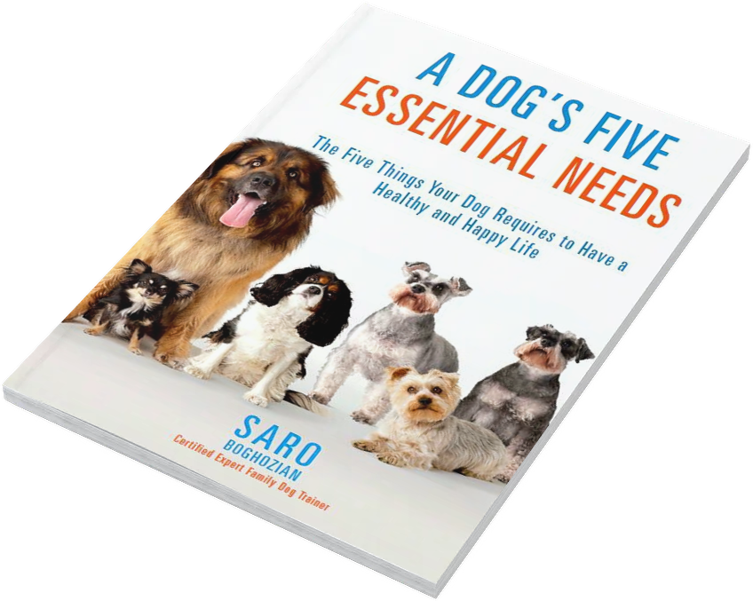 Dog Training Books For Adults by Saro Dog Training