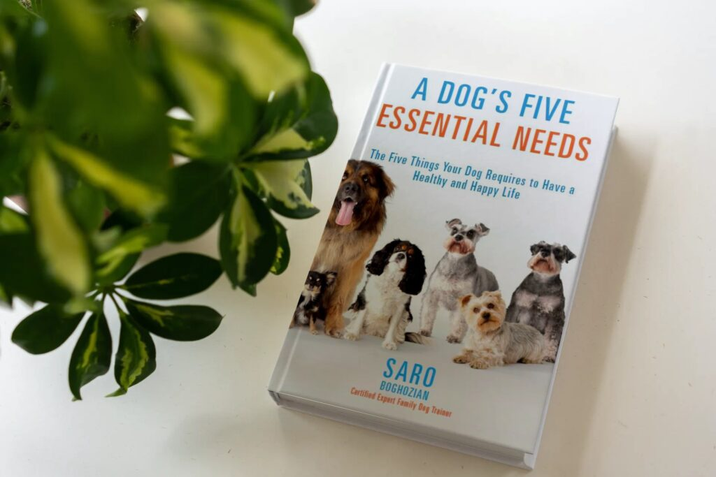 A dog's Five Essential Needs
