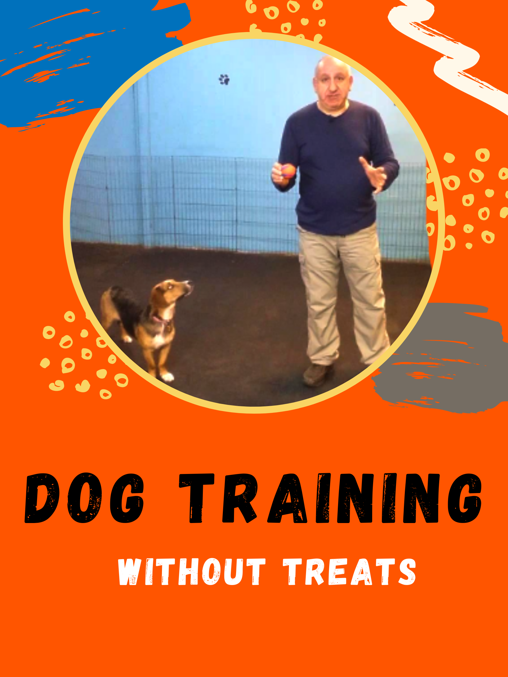 Learn Dog Training Method Without Treats and Food